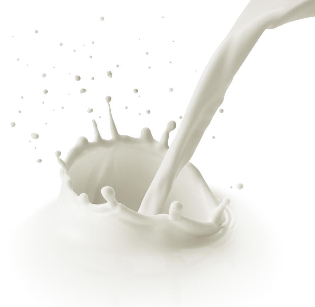 Lácteos 1